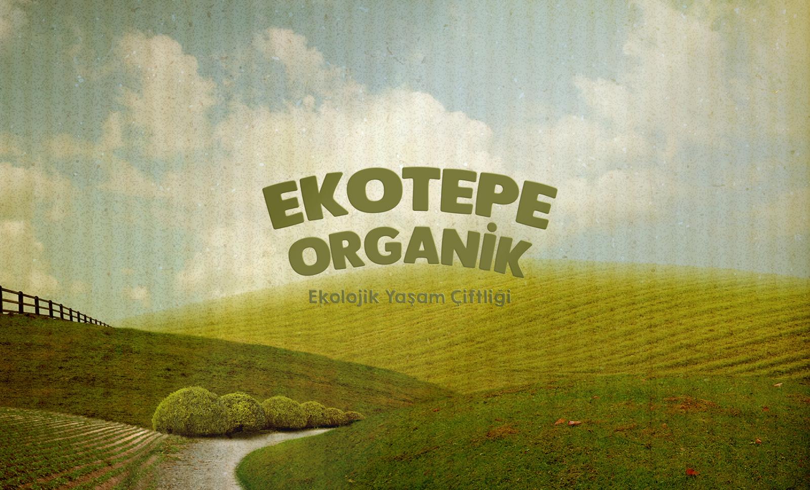 Creas Creative Tasarım ve Reklam Ajansı İzmir - Ekotepe Logo ve Kurumsal Kimlik Tasarımı